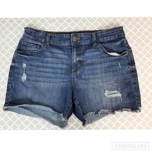 STYLE & CO Distressed Denim Jean Shorts Women's 12